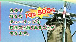 HR-1-300.jpg